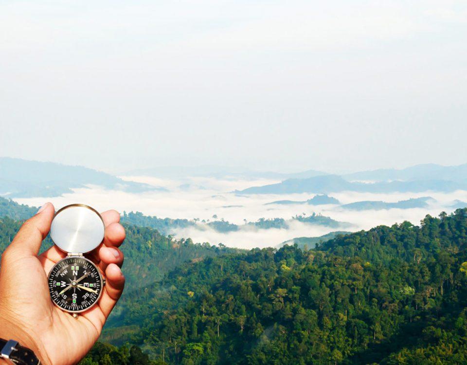 Magnet im Kompass